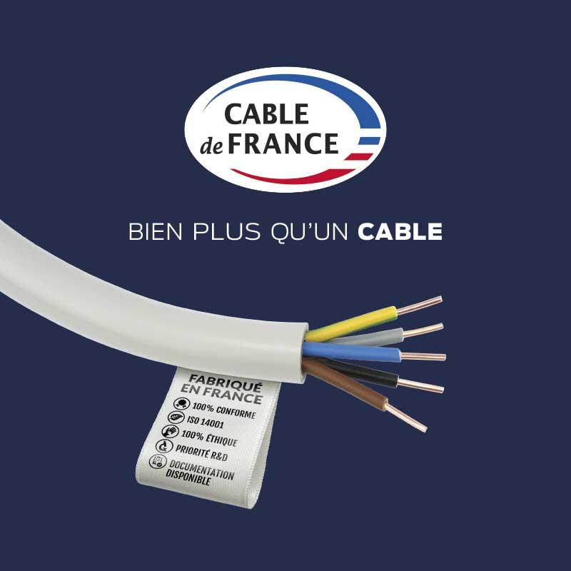 Conseil - Câble de France